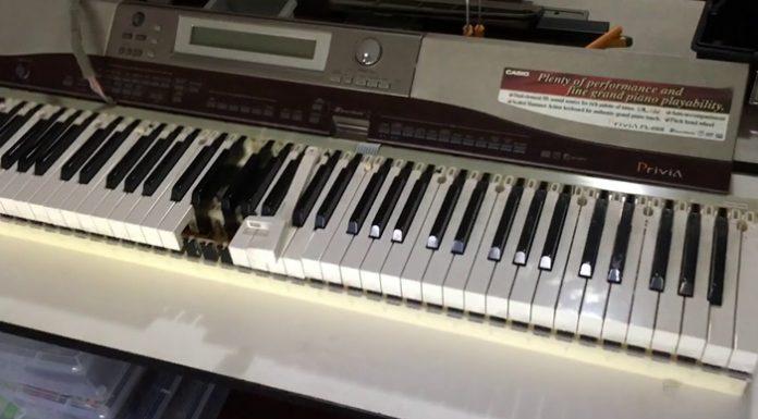ร้านซ่อมเปียโน เลือกอย่างไรให้ได้ร้านที่เชื่อถือได้ มีคุณภาพจริง